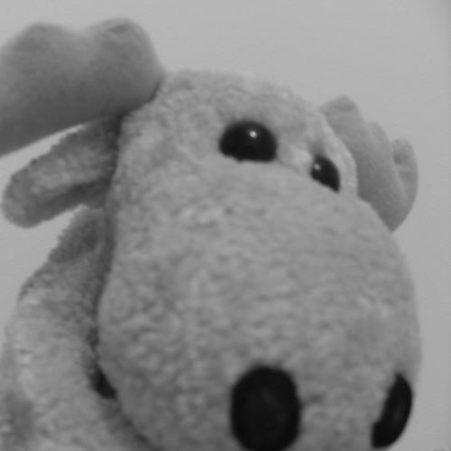 LQKak's avatar