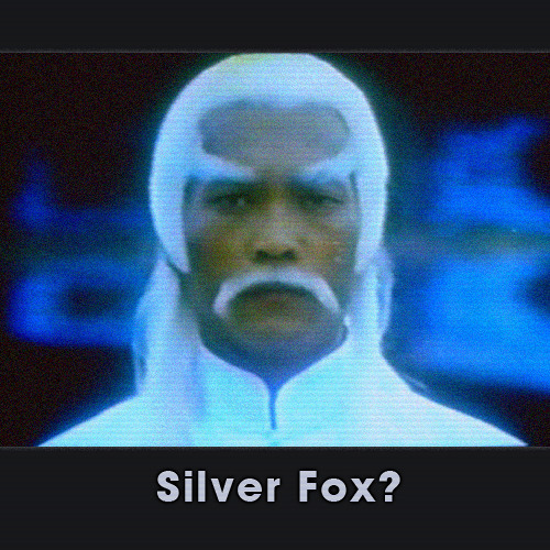 The Silver Fox's avatar