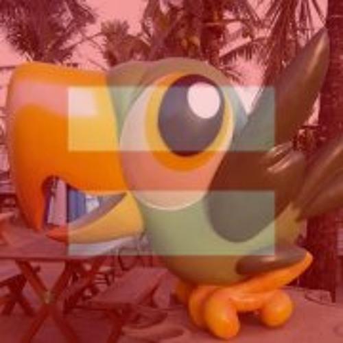 Papagaio No Brasil's avatar