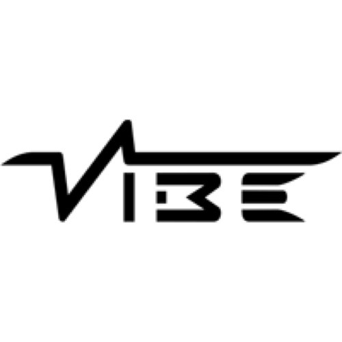 Raise Your Fist (Vibe Remix) **Go VOTE****press BUY**