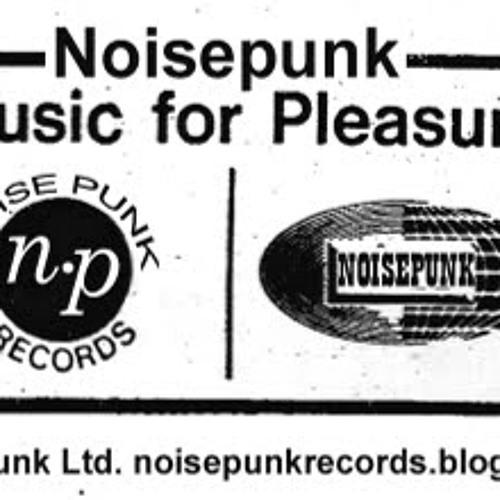 Noise Punk Records's avatar