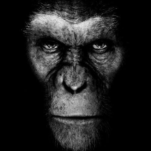 Markmillionz's avatar