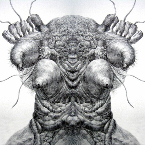 Cryptolee's avatar