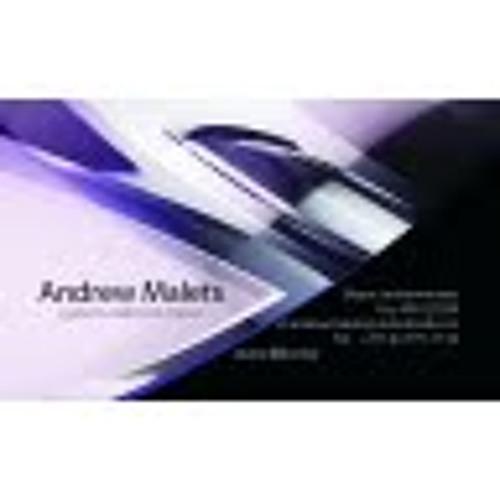 Andrew Malets 1's avatar