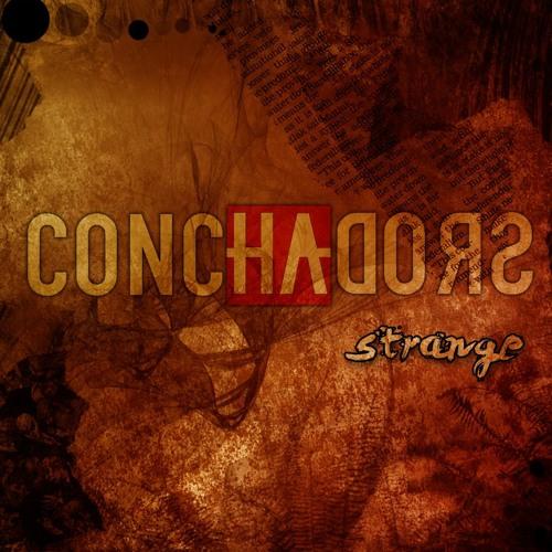 CONCHADORS's avatar