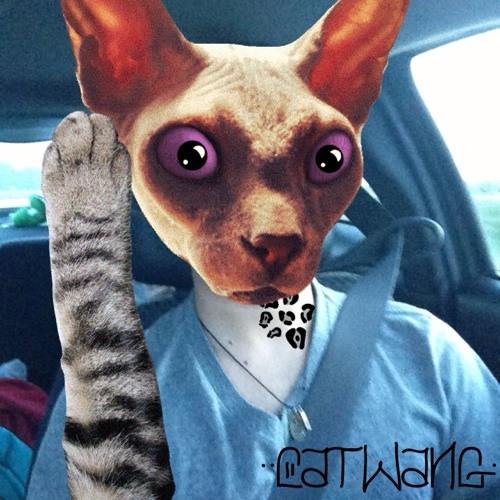 diegoschokehold's avatar