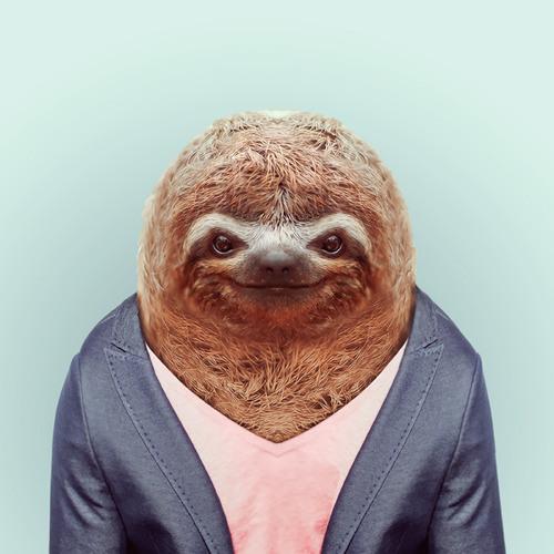 MagnetMax's avatar