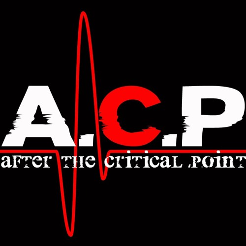 After The Critical Point's avatar