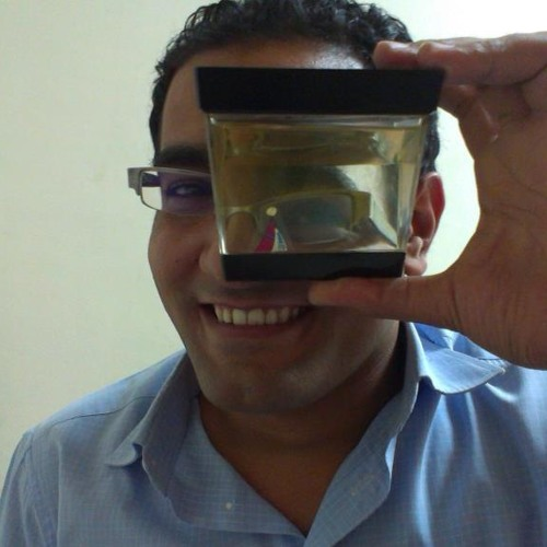 Alaa Rehan's avatar