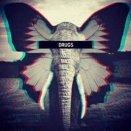 $nakeskin Butterfly's avatar