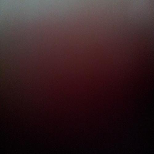 .dim light's avatar