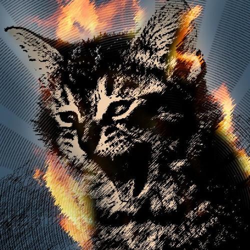 Pielesz's avatar
