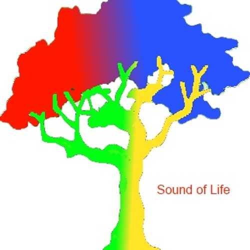 Sound-of-life's avatar
