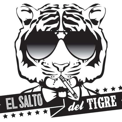 El Salto Del Tigre's avatar