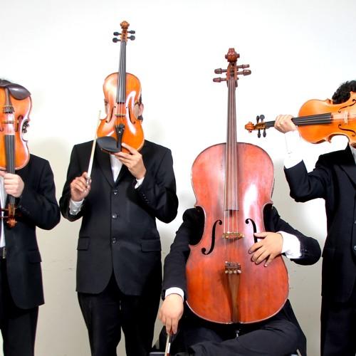Soloist in America's avatar