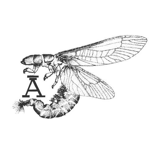Komora A's avatar