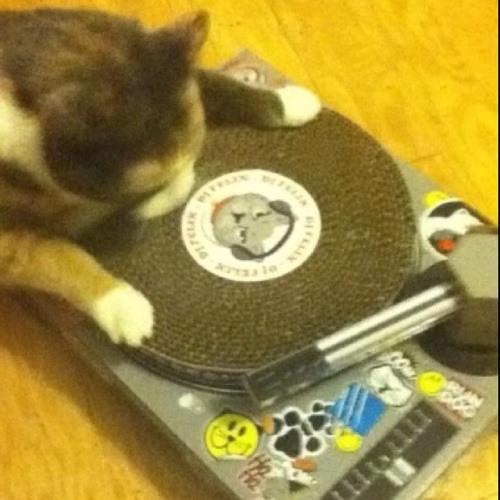 DJ McBastard's avatar