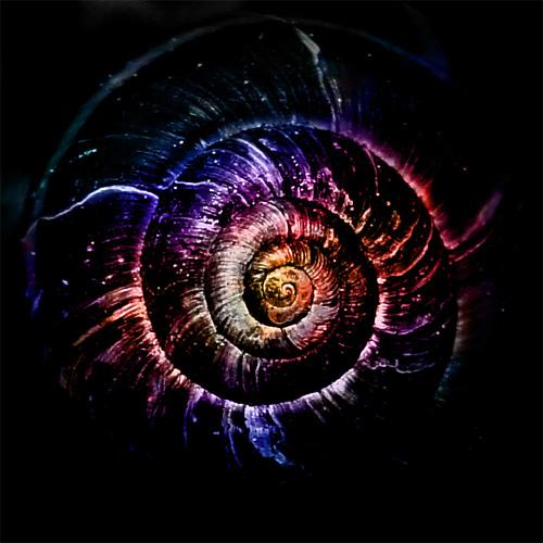 twilightcoil's avatar