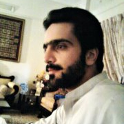 mir salahuddin kurd's avatar