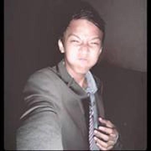 Vincent Bayson's avatar