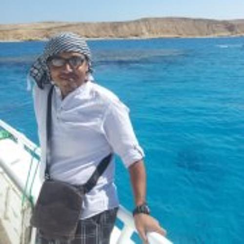 Mostafa Shoeib's avatar