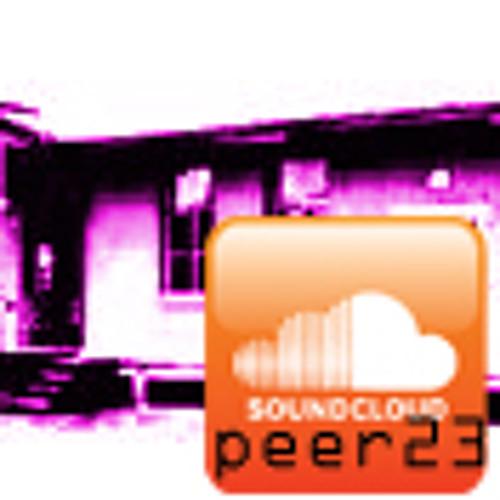 peer23's avatar