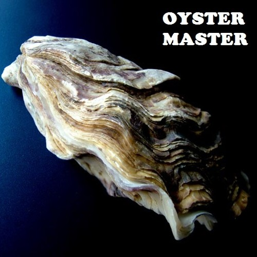 Oyster Master's avatar