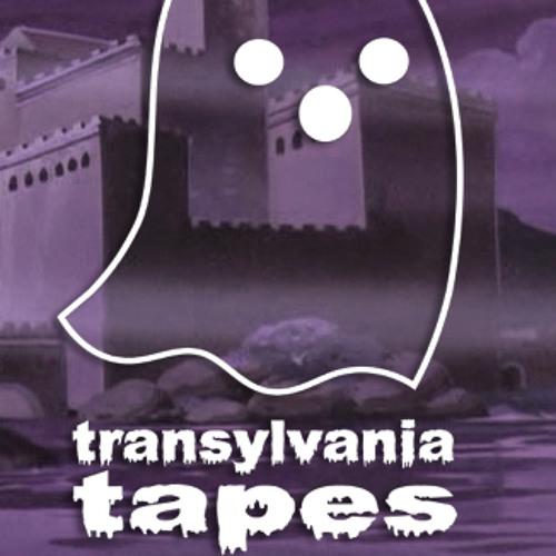 Transylvania Tapes's avatar