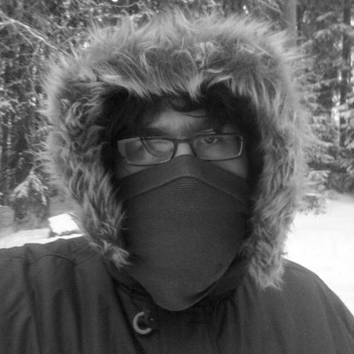 Raimo Kangasniemi's avatar