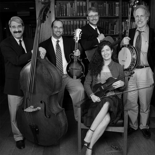 Professors Of Bluegrass's avatar