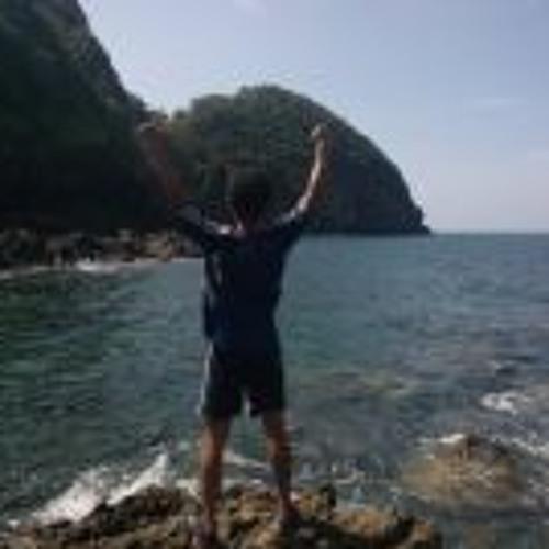 Soh Sheng WeiGee's avatar