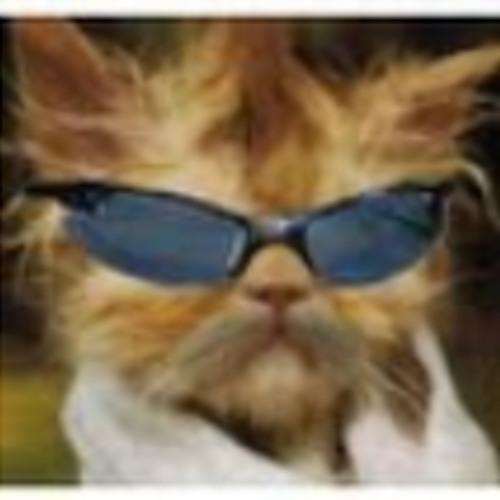 El Gato que Anda Solo's avatar