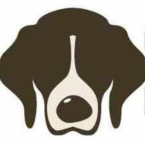 Beagle Beat Records's avatar
