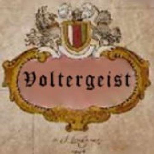 Voltergeist's avatar