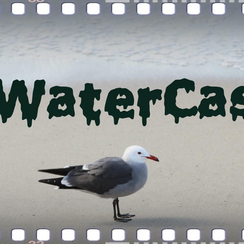 SaltWaterCastles's avatar