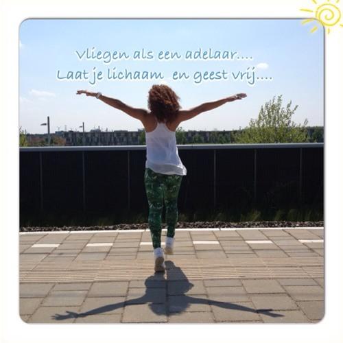 Moena Fraenk's avatar
