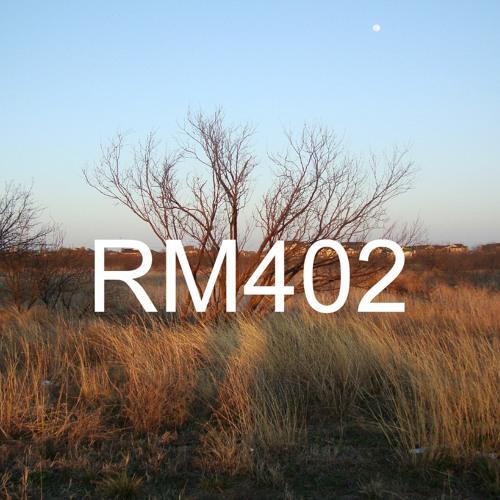 RM402's avatar