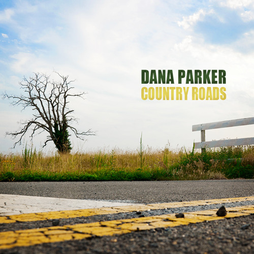 danaparker327's avatar