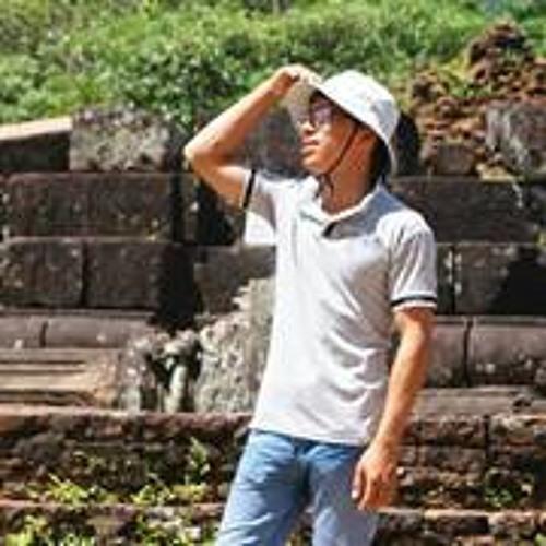 Hàn Thiên Vũ's avatar