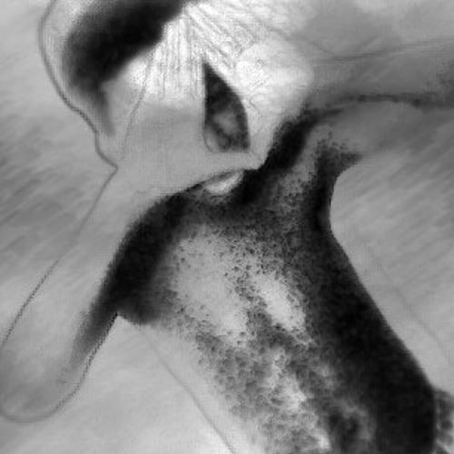 rocko1998's avatar