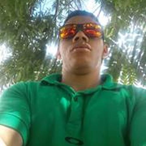 Luiz Brito Carvalho's avatar