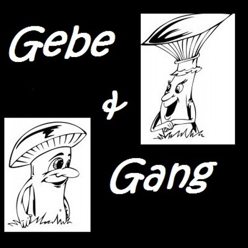 Gebe & Gang's avatar