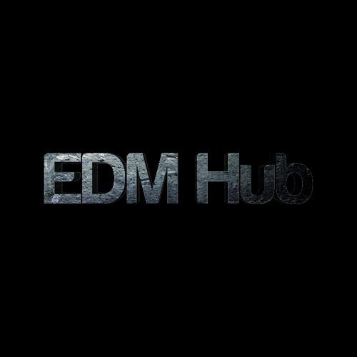 EDM Hub's avatar