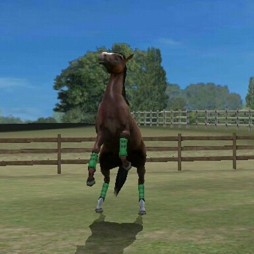horserun's avatar
