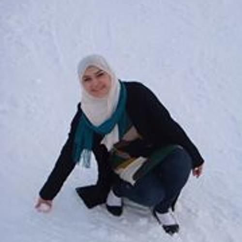 Sally H. Nassar's avatar