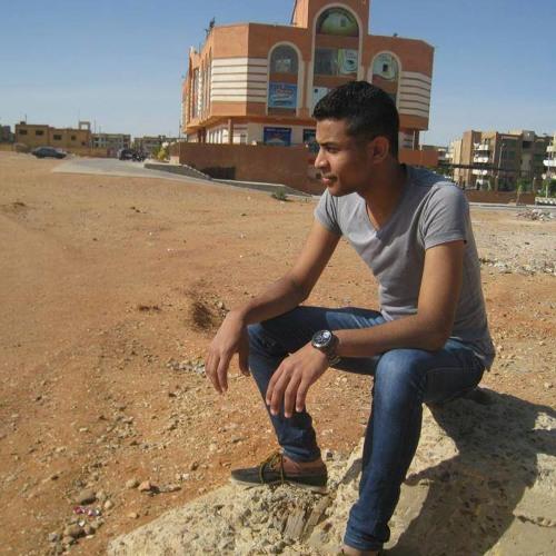 Mohamed Elhythomy's avatar