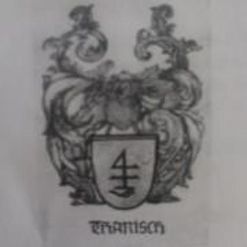 Eystein Thanisch's avatar