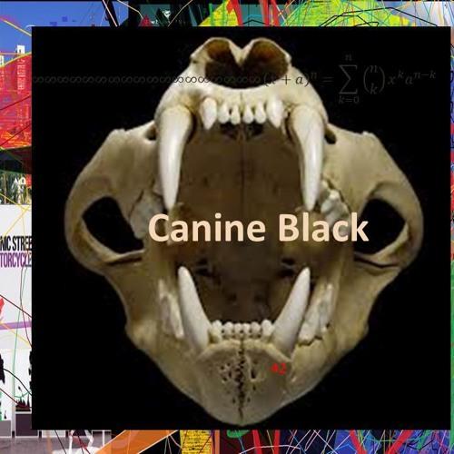 Canineblack's avatar