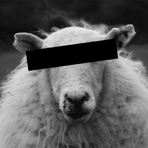 HELLOFDP's avatar