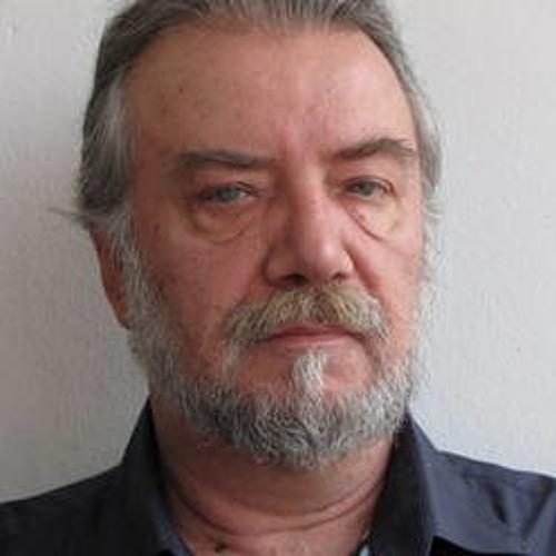 DamirStefan's avatar
